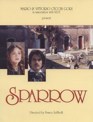 123-storia-di-una-capinera-sparrow.jpg